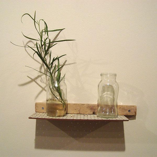 Toni Warburton, Artist. Riparian Rites, WVRAP Maitland RAG, 2011