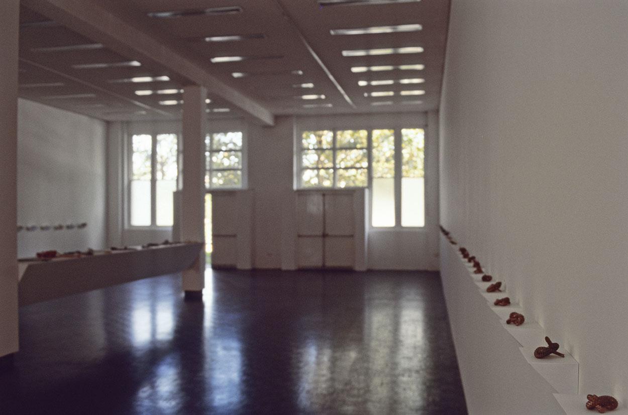 Toni Warburton, Artist. Sleight, installation, Mori Gallery, Day St Sydney. 1995