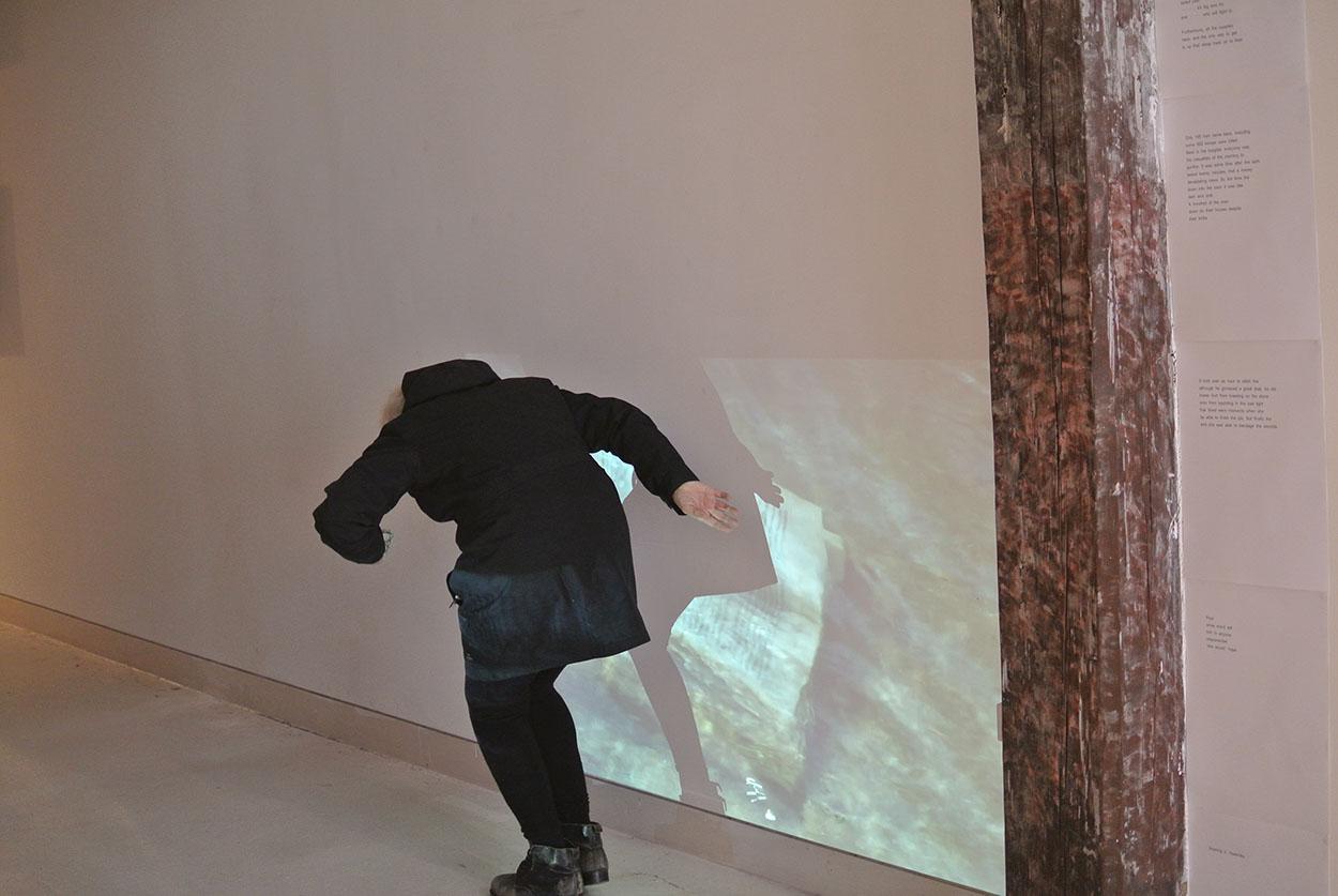 Toni Warburton, Artist. Art exhibition, Steerage, Platform 17, Articulate Project Space, 2017