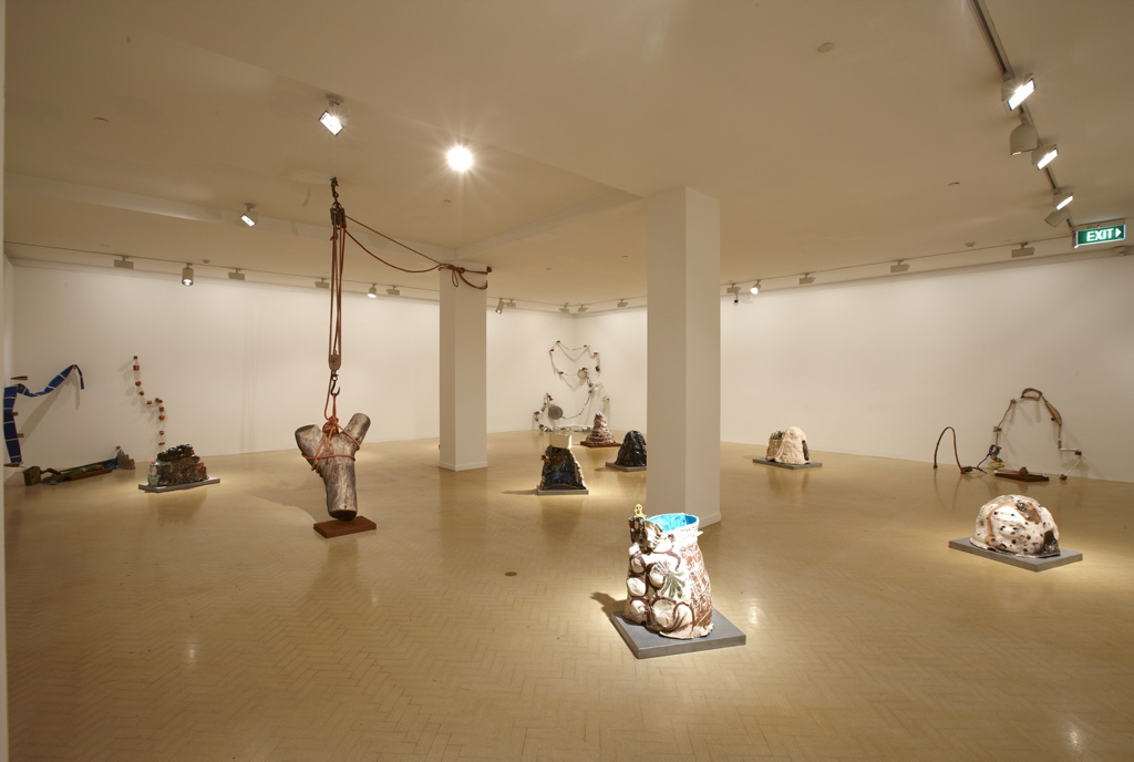 Toni Warburton, Artist. Art exhibition, Making it new, curated by Glenn Barkley, Museum of Contemporary Art Sydney, 2009