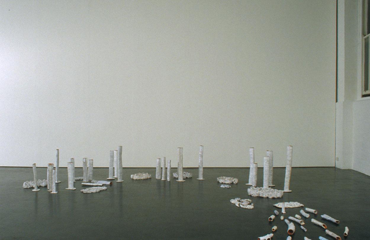 Toni Warburton, Artist. dealbatus, 2001